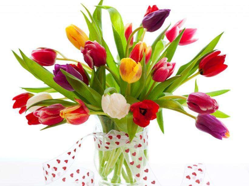 Felicitări cu ocazia  Zilei Internaționale a Femeii